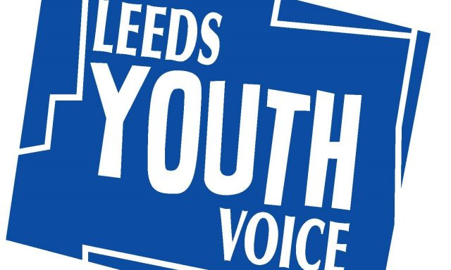 Leeds CC Voice Influence and Change Team